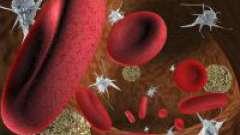 Аналіз крові на rdw: що це таке?