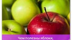 Чим корисні яблука, і корисні яблука взагалі