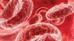 5 Основних способів підвищити гемоглобін в крові