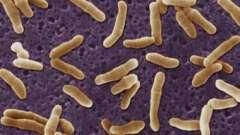 Дифтерія гортані - давня небезпечна хвороба