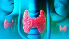 Гормони функціонуючої щитовидної залози у жінок: основні аналізи залози і таблиці норми (ттг, т3, т4 і ат-тпо, тг)