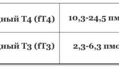 Гормони щитовидки: які аналізи здають, розшифровка показників