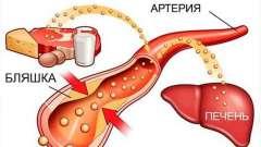 Холестерин при вагітності: норма і відхилення від неї