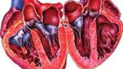 Симптоми вроджених і набутих вад серця