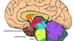 Особливості інсульту в області стовбура мозку