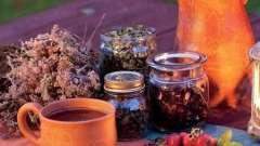 Ефективне лікування дифузно токсичного зобу народними засобами