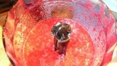 Ефективний засіб від застуди - простий рецепт з калини і меду