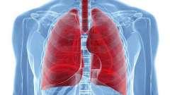 Ехінококоз легенів: етіологія, симптоми, особливості лікування