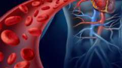 Як і чим почистити кров в організмі