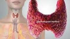 Як правильно перевірити щитовидну залозу