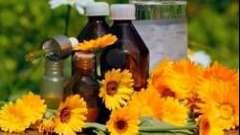 Як застосовувати календулу від прищів: рецепти настоянок, масок і мазей з календули