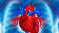 Як проявляється і лікується шлуночковатахікардія?