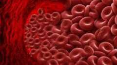 Як знизити гемоглобін в крові: дієта, медикаменти і народні рецепти