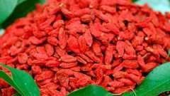 Як вживати ягоди годжі: рекомендація дієтолога