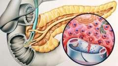 Які функції виконують гормони підшлункової залози?