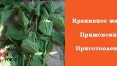 Кропив`яне масло: приготування і застосування