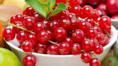 Червона смородина - корисна річна ягода