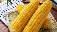 Кукурудзяні рильця - лікувальні властивості і протипоказання, користь і шкода