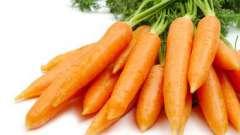 Лікування нежиті морквяним соком