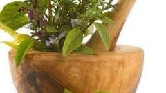 Лікарські рослини в гінекології