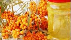 Кращі рецепти медово-обліпихових сумішей на всі випадки життя
