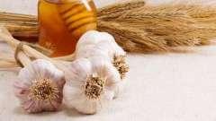 Мед плюс часник - чудодійний поєднання для вашого здоров`я