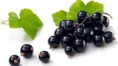 Чорна смородина - ароматний хранитель вітамінів і мікроелементів