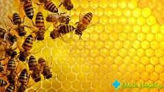Чи можна їсти мед при діабеті? Як правильно вживати його?