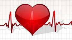 Нормальне серцебиття людини: циклічність і відхилення