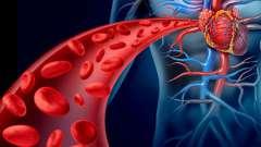 Очищення крові народними засобами