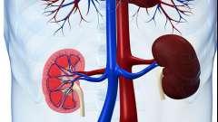 Основні симптоми хвороби нирок
