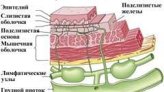 Чому з`являється і як лікується лейкоплакия стравоходу?
