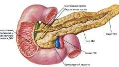 Що таке узі підшлункової залози і кому потрібно його проходити