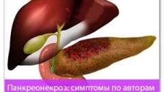 Панкреонекроз: симптоми по авторам з методикою перевірки