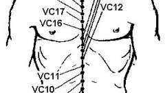Переднесредінний меридіан (vc)