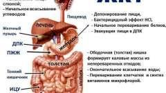 Підбираємо знеболююче при болях у шлунку