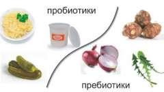 Користь пробіотиків і пребіотиків для кишечника