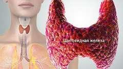 Знижена функція щитовидної залози