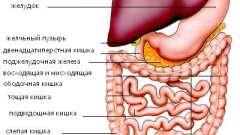 Поразки шлунково-кишкового тракту, в тибетській медицині