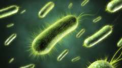 Наслідки кишкової інфекції при вагітності