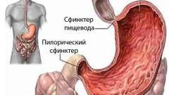 З`ясування причин та лікування бурчання в животі після їжі