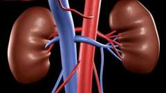 Біль в нирках: основні захворювання, симптоми, лікування