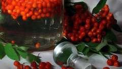 Рябиновая настоянка - унікальні рецепти напою домашнього приготування