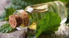 Найширший спектр корисних властивостей від масла меліси для краси і здоров`я