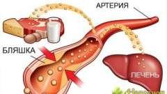 Зниження холестерину в крові за допомогою правильного харчування