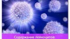 Вміст лейкоцитів: норма і відхилення