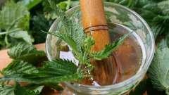 Топ-10 трав, які допоможуть позбутися від стресу