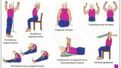 Вправи для спини: розслаблюємо, зміцнюємо, качаємо м`язи