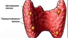 Захворювання ендокринної системи гиперпаратиреоз, симптоми і лікування