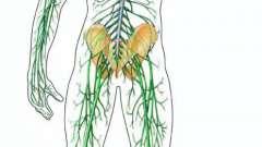 Захворювання нервової системи людини, в тибетській медицині